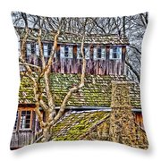 Abandoned House-don Robinson State Park-enhanced Throw Pillow
