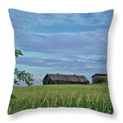 Abandoned In Grass Throw Pillow