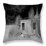 Abandoned In The Field Black And White Throw Pillow