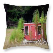 Abandoned In The Field Throw Pillow