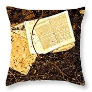 Abandoned Kp Book 1 Throw Pillow