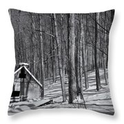 Abandoned New England Sugarhouse Throw Pillow