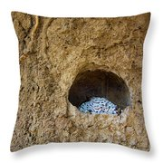 Abandoned Royal Cell Throw Pillow