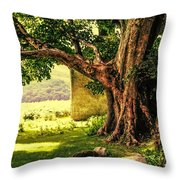 Abandoned Ruins Throw Pillow