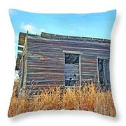 Abandoned Shack Throw Pillow