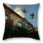 Abandoned Theater Oasis Throw Pillow