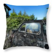 Abandoned Vehicles - Veicoli Abbandonati  2 Throw Pillow