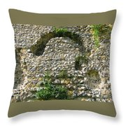 Abbey Ruins Throw Pillow