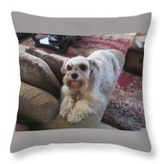 Abby Watching Over Us II Throw Pillow