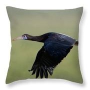 Abdims Stork Flying, Ndutu, Ngorongoro Throw Pillow