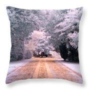 Abney Park, London Throw Pillow