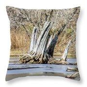 Aboriginal Stumps Throw Pillow