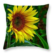 About Face And Stand Tall Throw Pillow