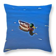 About Love. Diptych. Male. Throw Pillow