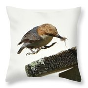 About To Land Throw Pillow