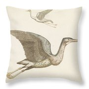 Above A Flying Crane And Beneath A Flying Pelican, Anonymous, 1688 - 1698 Throw Pillow