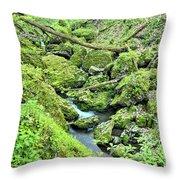 Above Moine Creek 2 Throw Pillow