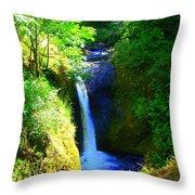 Above Onionta Falls Throw Pillow