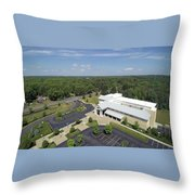 Above The Library Iv Throw Pillow