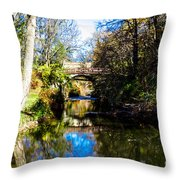 Above The Rapids Throw Pillow