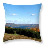 Above The Vines Throw Pillow