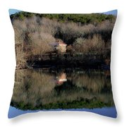 Above The Waterfall Reflection Throw Pillow