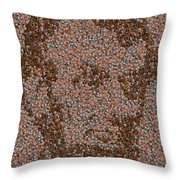 Abraham Lincoln Penny Mosaic Throw Pillow