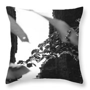 Absence Of Window Throw Pillow
