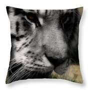 Absolute  Throw Pillow