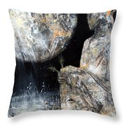 Absolutelly Fantastic Humanity Portret By Master Kloska Large Size Cosmic Garden Wow Throw Pillow