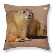 Absolutely Adorable Prairie Dog With  A Friend Throw Pillow