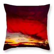 Absorbtion Throw Pillow