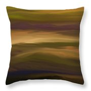 Abstract 013111 Throw Pillow