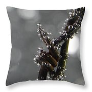 Abstract 014 Throw Pillow
