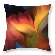 Abstract 051816 Throw Pillow