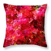 Abstract 052310 Throw Pillow