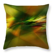 Abstract 060210 Throw Pillow