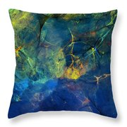 Abstract 081610 Throw Pillow