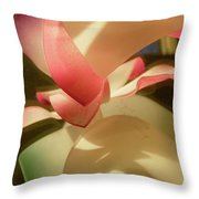 Abstract 1083 Throw Pillow