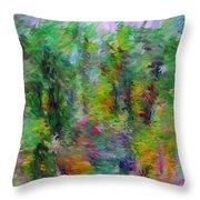 Abstract 111510a Throw Pillow
