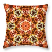 Abstract 120410 Throw Pillow