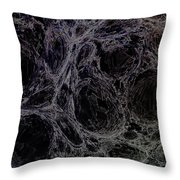 Abstract 63016.8 Throw Pillow