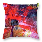 Abstract 6539 Throw Pillow