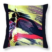 Abstract 6738 Throw Pillow