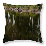 Abstract Along The River Throw Pillow