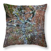 Abstract And Lichen Throw Pillow