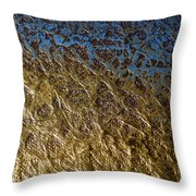 Abstract Artography 560004 Throw Pillow