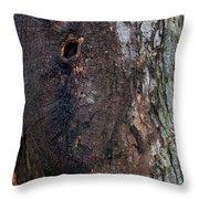 Abstract Bark 14 Throw Pillow