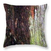 Abstract Bark 15 Throw Pillow