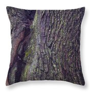 Abstract Bark 6 Throw Pillow